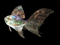«Pez Globo», a translucent fish made from plastic bottles and CDs, by Spanish artists Cristina Pino - Gustavo Suasnábar (Vigo, Spain).