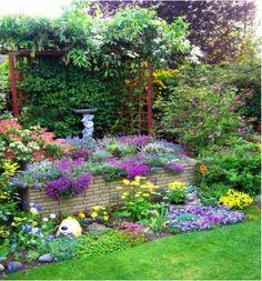 Pics Photos - Flower Flower Garden
