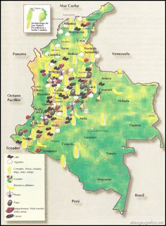 MAPA DE REGIONES ECONOMICAS :: WEB 502 LIC. ELIANA PUENTE Colombian Culture, Colombia Travel, English Lessons, Ideas Para, Diagram, Nature, Darth Vader, Maps, Geography