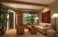 Living Room Paint Colors Ideas With Ornamental Plants