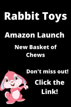 We are launching a new product on Amazon. Savings abound! Click the link to find out more! New Product, Product Launch, Amazon New, Rabbit Toys, Chinchilla, Guinea Pigs, Bunnies, How To Find Out, Link