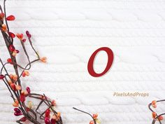 Lowercase letter o with berry garland and sweater knit. #fall #autumn #alphabet #typography #initial #monogram #font
