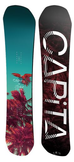 Capita Birds of a Feather Snowboard - Women's Snowboards - Women's Snowboarding - Winter 2015/2016 - Christy Sports
