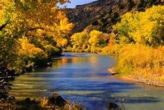 Rivers of gold flow through the dark New Mexico mountains in the fall