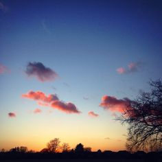 Frothy little beauties enjoying the sky while underneath their passage people living lives go by. #clouds #froth #pink #sunset #goodfood #bucolic #pastoral #lovely #landscape #winter #january #sun #sky #scene #view