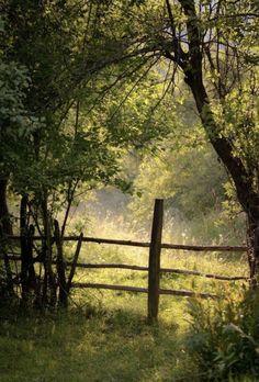 natur wald Magura 43 by adimymsg on DeviantArt Country Living Country Life, Country Living, Country Girls, Country Walk, Country Houses, Country Style, Esprit Country, Landscape Photography, Nature Photography