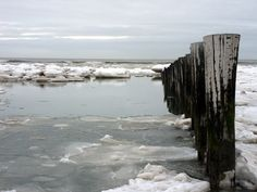 Ameland winter - Google zoeken