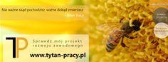www.tytan-pracy.pl Asystent samorozwoju, tworzenia marki osobistej oraz potencjału szkoleniowego.