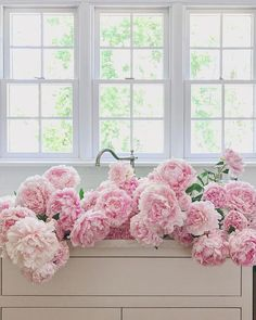 Large, delicate pink peonies in bloom. Pretty pink peonies in a vase. Anyone else haul home some peonies today? My Flower, Fresh Flowers, Pink Flowers, Beautiful Flowers, Pink Roses, Cactus Flower, Tea Roses, Exotic Flowers, Yellow Roses