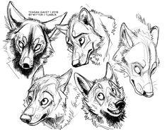 My Approach to Animal Expressions... by teagangavet on DeviantArt