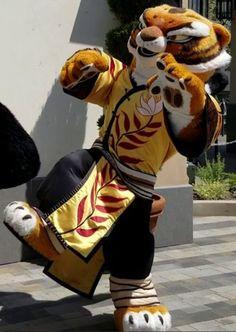 Kung Fu Panda - Tigress Tigress Kung Fu Panda, Nintendo Sega, Anthro Furry, Thomas And Friends, Fursuit, Mascot Costumes, I Movie, Tigger, Husky