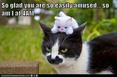 So glad you are so easily amused...so am I at 4 am....