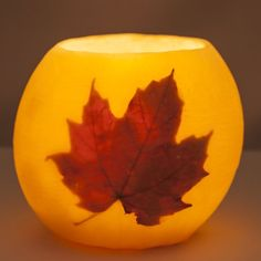 BEESWAX CANDLE WITH MAPLE LEAF