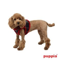 """back view of Authentic Puppia """"Scholastic"""" Choke-Free Faux Fur Lined Vest Harness in Color Red Check  (step-in) styled harness"""