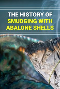 Going back to the sea, reconnects us to our ancestors and their sacred traditions. A great way to bring the sea into your healing practice is to start smudging with abalone shells.  #smudgeing #cleansing #crystalcleanse