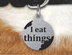 Funny Pet Tag, I Eat Things Pet Tag, Funny Pet Tag, Double Sided Pet Tag, Dog Tags For Dogs, Pet Id Tags, Funny Pet ID Tag, by MysticCustomDesignCo on Etsy