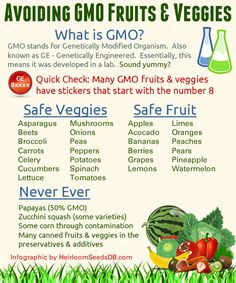 Avoiding GMO Fruits & Veggies (Infographic) « Heirloom Seeds Database