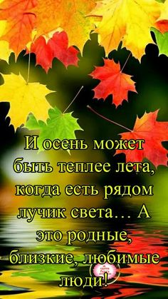Осень Good Morning Coffee, Different Quotes, Positive Thoughts, Wise Words, Prayers, Happy Birthday, Greeting Cards, Positivity, Seasons