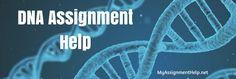DNA Assignment Help