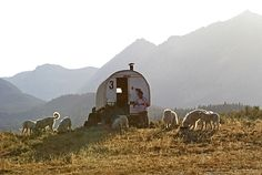 basque sheep wagon in Idaho.I've seen a few of these. Bilbao, Great Pyrenees Dog, Shepherds Hut, Home On The Range, Gypsy Wagon, Basque Country, To Infinity And Beyond, Wyoming, Idaho