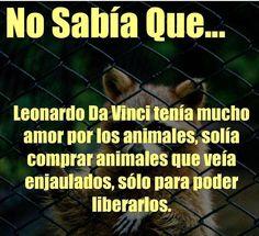 No sabía...que Leonardo Da Vinci tenía mucho amor por los animales...