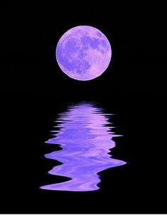 Moon Harvest Moon and Moon shine!Harvest Moon and Moon shine! Moon Pictures, Pretty Pictures, Cool Photos, Moon Pics, Beautiful Moon, Beautiful World, Shoot The Moon, Harvest Moon, Golden Harvest