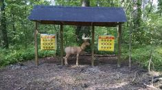 Three targets, covered range, this is great! One of these at the farm. Archery Range, Archery Tips, Crossbow Hunting, Archery Hunting, Crossbow Targets, Crossbow Arrows, Archery Targets, Diy Crossbow, Bow And Arrow Target