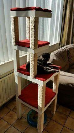 DIY cat urban cat design / living with cat - DIY cat urban cat design / living with cat - Diy Cat Tower, Cat House Diy, Cat Perch, Cat Towers, Cat Shelves, Cat Enclosure, Cat Room, Cat Condo, Pet Furniture