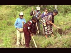 Miembros de un pueblo que forma parte de la cultura mam trabajando el suelo y cosechando sus cultivos. CLAVE #19