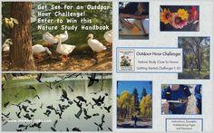 Nature Study handbooks