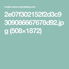 2e07f302152f2d3c9309086667678d92.jpg (508×1872)