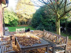 Holzterrasse im Herbst
