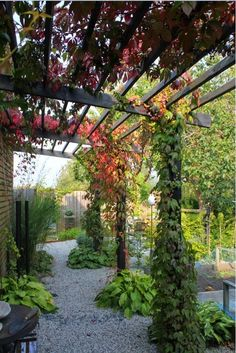 Pergola Installation Near Me Outdoor Pergola, Backyard Pergola, Backyard Landscaping, Back Gardens, Outdoor Gardens, Garden Fencing, Garden Paths, Modern Gazebo, Zen Rock Garden