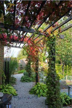 Pergola Installation Near Me Outdoor Pergola, Backyard Pergola, Backyard Landscaping, Zen Rock Garden, Garden Paths, Back Gardens, Outdoor Gardens, Garden Entrance, Garden Arches