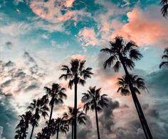 Pinterest//bsquiti