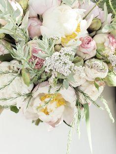 peonies & english roses