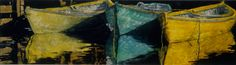 """naples yellowindian yellow n viridian  dories 14"""" x 40""""  micheal zarowsky watercolour on arches paper / private collection"""