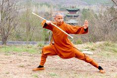Learn Shaolin Kung Fu Snake Fist with Shifu Shi Yan Jun, 34th Generation Shaolin Warrior Monk and 17th Generation Disciple of Mei Hua Quan. 6 Duanwei Chinese Wushu Association & 8 Duanwei Shaolin Wushu Association. kungfushaolins.com