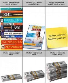 Web Developer vs SEO vs Social Media Experts