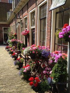Hofje in Groningen, The Netherlands