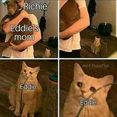 funny memes memes videos faces faces reaction faces reaction videos hilarious hilarious texts hilarious texts crush sarcastic sarcastic dark en espanol pictures funny pictures funny pictures humor quotes quotes for women halloween costumes facts Naruto And Sasuke, Naruto The Last, Anime Naruto, Crush Memes, Disney Memes, Memes Humor, Humour Quotes, Comedy Quotes, Funny Quotes