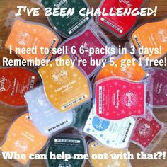 scentsy challenge ~ sell six 6-packs. Order today at: http://ashleypaige.scentsy.us/