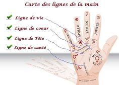 Arcenciel20.com Les Lignes de la Main fournissent des informations précieuses sur la disposition et le développement de la personne. ...