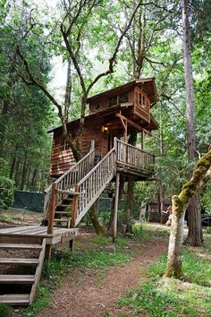 My dream home must have a big tree...i want an amazing tree house for sleepovers