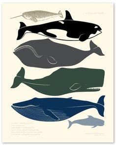 whales letterpress print