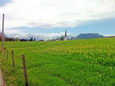 Natur pur im Oberallgäu.