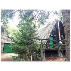 Green Front Door now has a friend, Green Garage Door 💚🌿🐍🍏✳️ #matchymatchy #green #aframe #cabinlove #exteriordesign #ourmagicaframe #dwell #dscolor #popofcolor