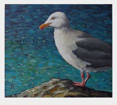 Fine art paintings and illustrations by Thomas Haskett. Landscapes, seascapes, portraits and plein air. Herring Gull, Seaside, Birds, Fine Art, Landscape, Portrait, Illustration, Painting, Animals