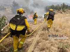 FEATURED POST   @epn564 -  CALFIRE BDU Highland firefighters from Highland engaging the Wash Fire this afternoon. CHECK IT OUT!    @amazingadventuresofmydad  The Amazing Adventures of My Dad is a comical picture book  about a fathers not so average job as a firefighter.  Must have for  firefighting Dads this Father's Day ! http://ift.tt/1Ugcr3p . ___Want to be featured? _____ Use #chiefmiller in your post .  #firetruck #firedepartment #fireman #firefighters #ems #kcco  #brotherhood…