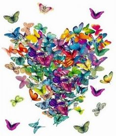 Genuine Love: Four Elements of Love (Practices for Awakening the Heart) Butterfly Photos, Butterfly Kisses, Butterfly Art, Butterfly Project, Butterfly Gifts, Butterfly House, Butterfly Pattern, I Love Heart, My Love
